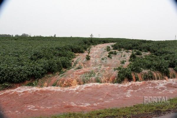 A imagem é de uma lavoura de soja afetada pelas chuvas. (Foto: Portal Nova Santa Rosa)