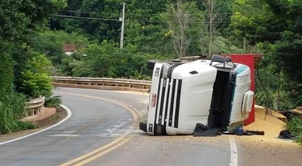 A suspeita é que o enxame tenha sido atingido no momento em que o veículo tombou.(Foto: Rafael Silvestrin/Tasabendo.com)
