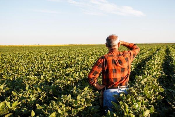 O prazo de adesão ao Programa de Regularização Tributária Rural (PRR) termina nesta segunda-feira (30).(Foto: Agência Brasil/ Arquivo)