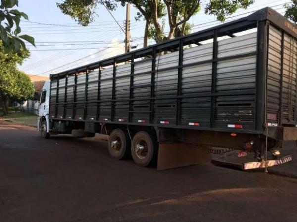 Ele carregava um carga com 44 cabeças de gado e não possuía documentação necessária para transporte animal. (Foto: Catve)