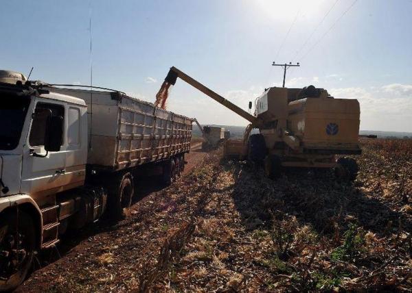 IBGE estima que a soja deve fechar 2018 com alta de 0,6% na produção (Arquivo/Agência Brasil)