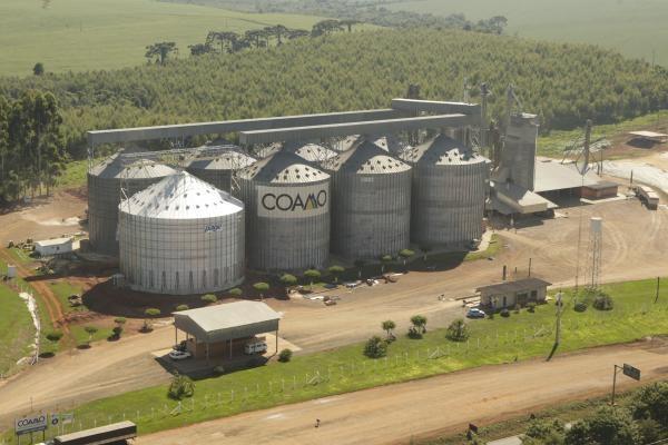 Coamo/Divulgação (Foto: Cooperativas: 40 milhões de frangos deixaram de ser abatidos no Paraná durante a greve)