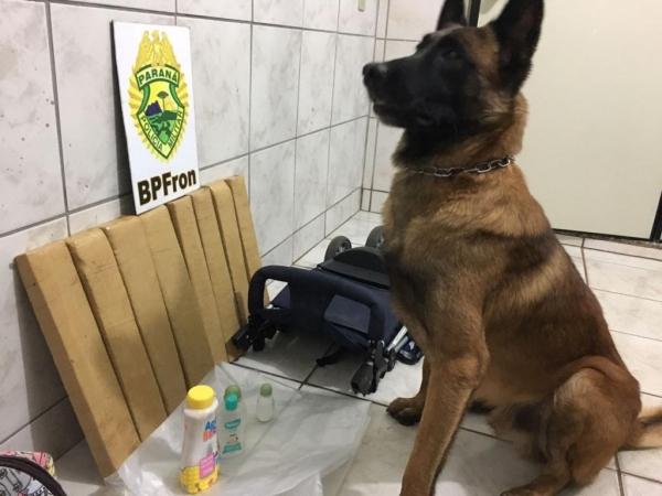 Quase 10 kg de maconha foram apreendidos (Foto: Divulgação/BPFron )