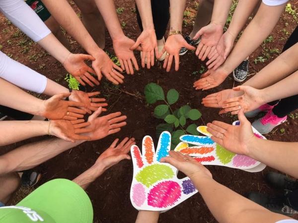 A iniciativa escolhida pela agência foi o plantio de mudas de flores  e de árvores . (Fotos: Divulgação)