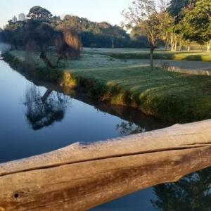 Parque Barigui, em Curitiba, na manhã desta quarta-feira (11) (Foto: Dulcineia Novaes/RPC)