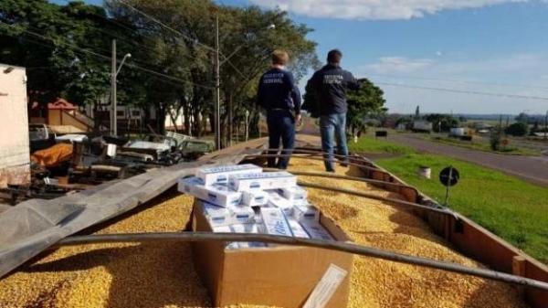 O contrabando estava escondido em meio a uma carga se milho.(Foto:Catve)
