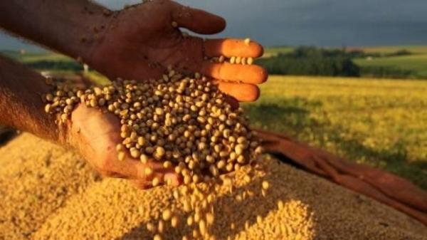 Custo de transporte para o setor agropecuário pode subir em até 152%. (Foto: Divulgação)