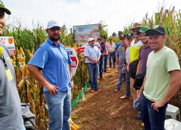 Na manhã de ontem (27) diversos produtores rurais participaram do Dia de Campo de Milho Safrinha. (Fotos: Divulgação)