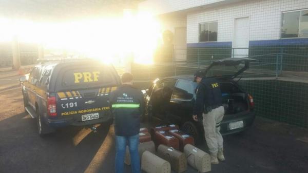 Os animais e os dois homens foram encaminhados para a Polícia Federal de Guaíra.(Foto: PRF)