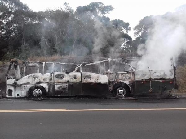 O incêndio foi controlado pela equipe da concessionária da rodovia. (Foto: PRF)
