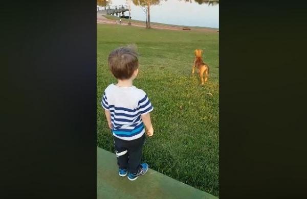 Está saindo lágrima do meu olho de tão fofinho isso, diz o pequeno que vem ganhando as redes sociais. (Foto: Reprodução)