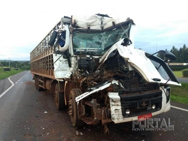 O condutor do caminhão boiadeiro dormiu na direção. (Fotos: PRF)
