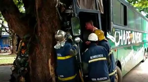 O motorista ficou preso entre às ferragens. (Foto: Plantão Maringá)